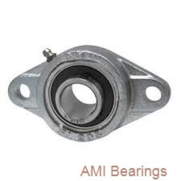 AMI UKPU309+HS2309  Pillow Block Bearings #1 image